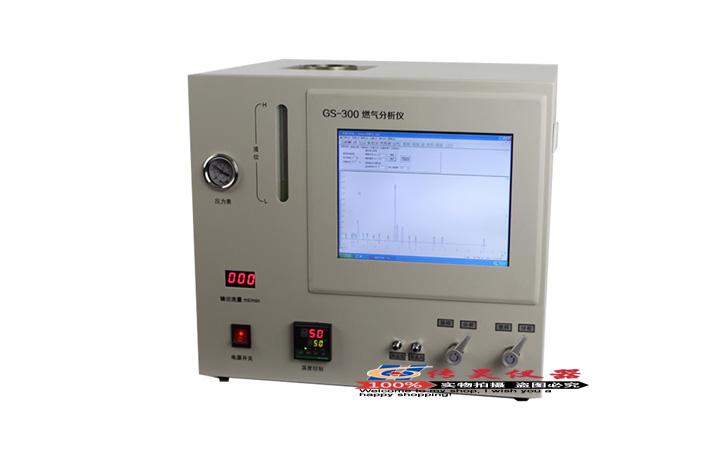 上海传昊GS300天然气热值检测仪器氮气二氧化碳分析